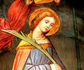 Arci Santa Caterina